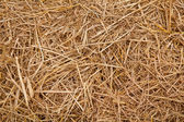 Straw from rice background — Stock Photo