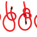 ������, ������: Knot series : bowline bend