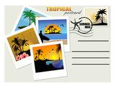 Cartolina tropicale — Vettoriale Stock