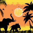 African safari theme - Stock Vector
