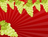 Grapevine border — Stock Vector