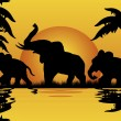Elephants at sunset - Stock Vector