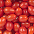 Cherry Tomatoes — Stock Photo #6105210