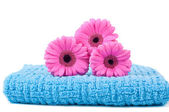 Towel on white — Stock Photo