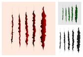 Slashes collection — Stock Vector