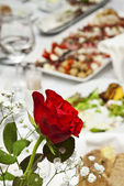 Red rose on served table — Stock Photo