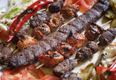 Selection of traditional turkish kebab — Stock Photo