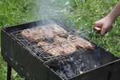 Pork steak prepared on Barbecue grill — Stock Photo