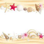Seashell frame — Stock Vector