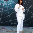 Beautiful Martial Arts Girl and Graffiti (2) - Stock Photo