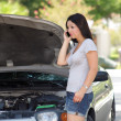 Stock Photo: Attractive Girl with Disabled Car (2)