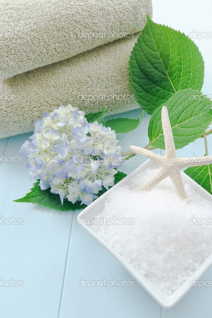 Sea salt bath scrub set against a light blue background accented with hydrangea and starfish.  Stock Photo #5960724