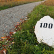 Mile stone in the grass near the road — Stock Photo