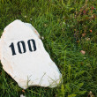 Mile stone in the grass — Stock Photo
