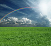 Green grass and blue cloudly sky with rainbow — Stock Photo