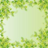 Leaf background — Stock Vector