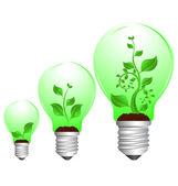 Bulb and plant growth — Stock Vector