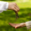 Hands of two , giving and taking keys, isolated over nature background — Stock Photo #6013588