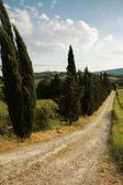 Chianti panorama — Stock Photo