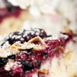 Wild berries cake closeup — Stock Photo