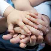 Family hands — Stock fotografie