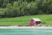 норвежский эллинг — Стоковое фото