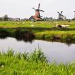 Dutch windmills in Netherlands — Stock Photo #5397758