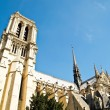 The Notre Dame or Our Lady of Paris , France — Stock Photo #6068614