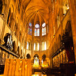 Inside of The Seine of Notre Dame de Paris — Stock Photo