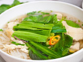 Vietnamese noodles or chicken Pho — Stock Photo