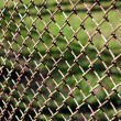 Fence Netting - Stock Photo