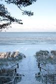 Treppe zum winterlichen Strand von Lubmin. — Stock Photo