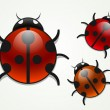 Set of vector multicolored ladybugs — Stock Vector #5986323