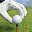 Hand placing a tee with golf ball — Stock Photo #6041599