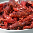 Boiled crawfish — Stock Photo