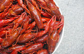 Boiled crawfish viewed from above — Stock Photo