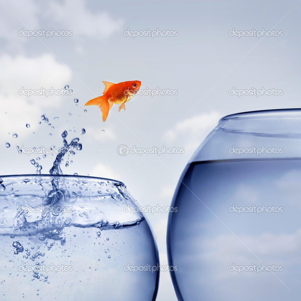 Goldfish jumping out of the water — Stock Photo #6599051
