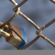Padlock fence - Stock Photo