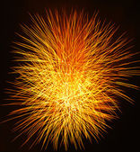 Sunburst fireworks — Stock Photo