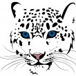 Snow leopard - Stock Vector