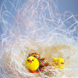Easter background with decorative chickens and eggs - Stock Photo