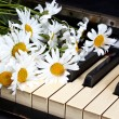 Stock Photo: Camomiles on the old piano