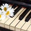 Camomiles on the old piano — Stock Photo #6682301