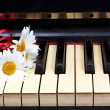 Flowers on the old piano — Stock Photo #6682639