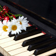 Stock Photo: Flowers on the old piano