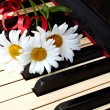 Flowers on the old piano — Stock Photo #6682658