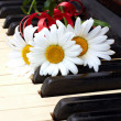 Flowers on the old piano — Stock Photo