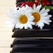 Flowers on the old piano — Stock Photo #6682688