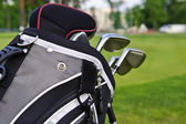 Golf sticks in a bag on golf course — Stok fotoğraf