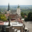 Panorama of Sandomierz with Cathedral, Poland - Stock Photo